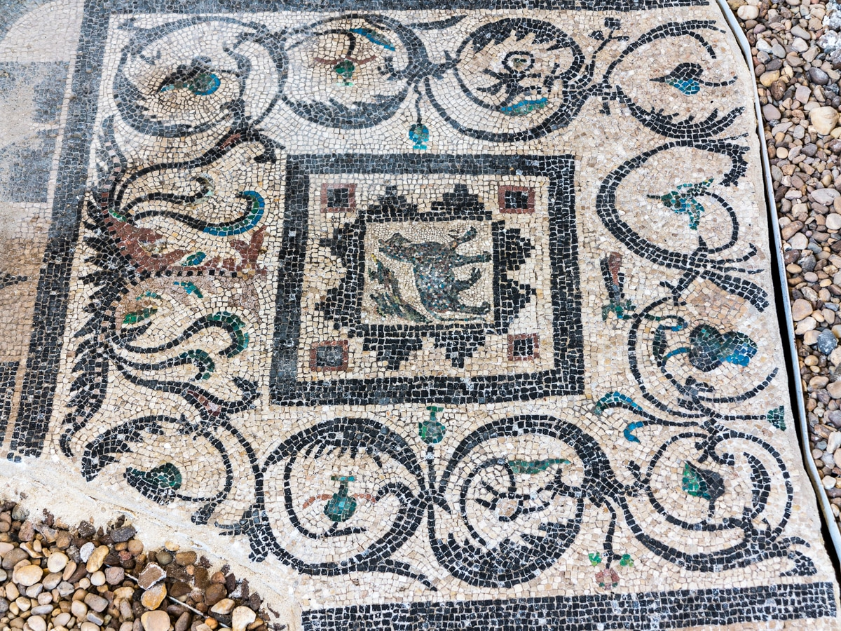 Ancient Roman mosaic tile decorated with elaborate flourishes and an animal depicted in the center (© Mike P Shepherd/Alamy)