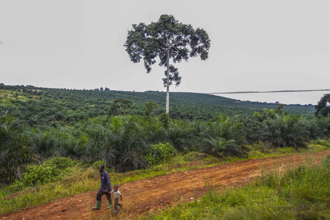Man and young boy walking down dirt road (© Isaac Kisamani/AFP/Getty Images)