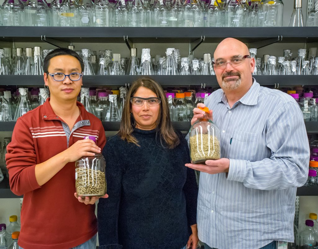 A woman standing between two men holding jars (© Roy Kaltschmidt/Berkeley Lab)