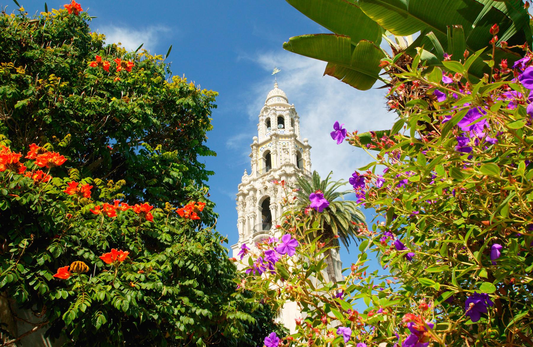 Ornate tower seen through flowers (Alamy)
