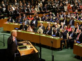Donald Trump speaking at lectern in front of auditorium full of people (© AP Images)