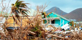 Destroyed palm trees and houses (© Helene Valenzuela/AFP via Getty Images)