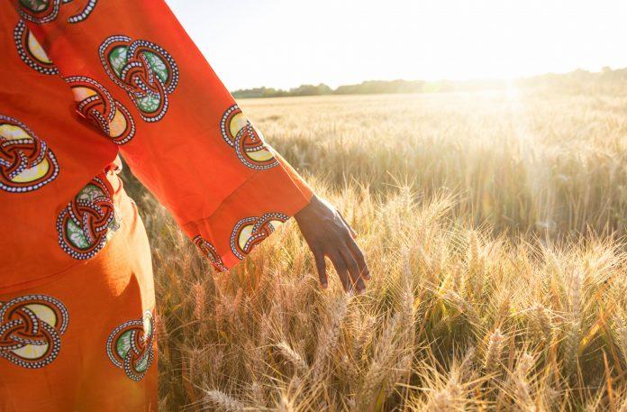 Woman in colorful dress walking in a wheat field (Shutterstock)