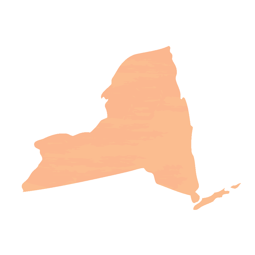 Carte de l'État de New York