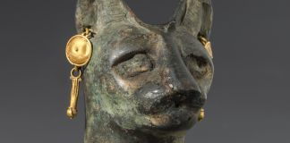 Estatua de la cabeza de un gato (©Instituto Smithsoniano)