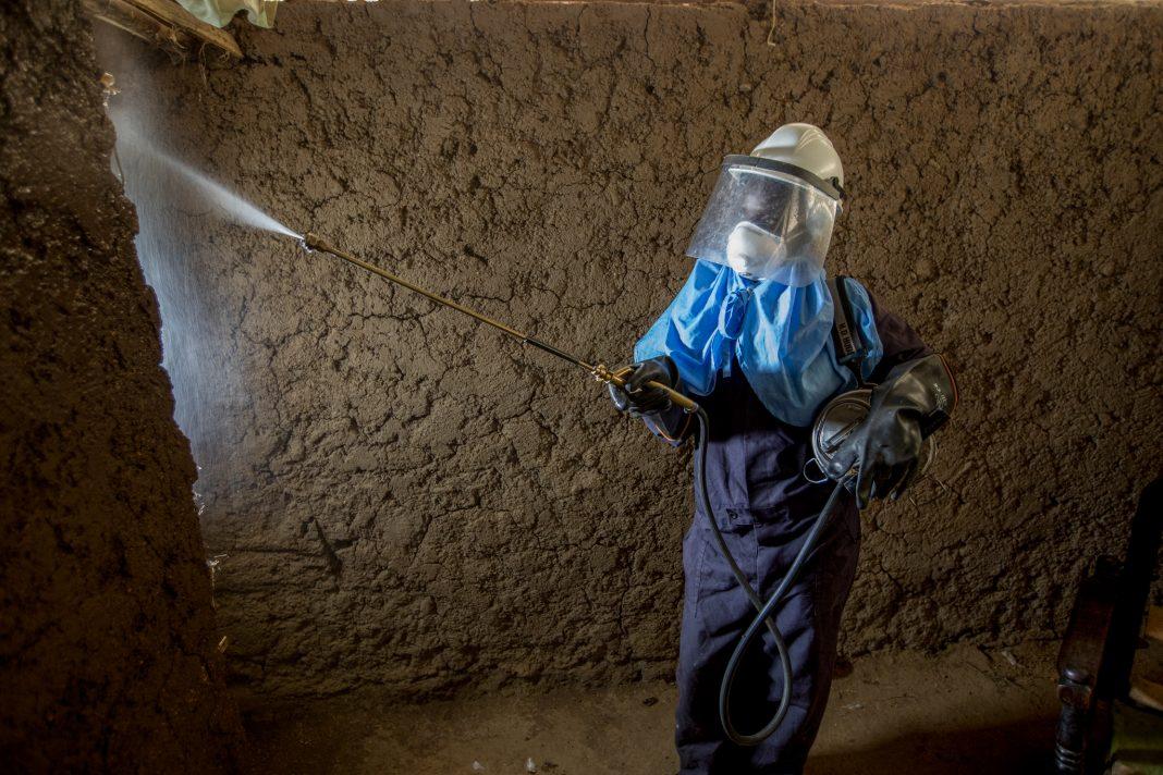 امرأة ترتدي ملابس واقية ترش مبيدًا حشريًا في منزل. (© Jessica Scranton/AIRS)