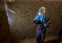 Mujer con traje protector rocía con insecticida el interior de una casa (© Jessica Scranton/AIRS)