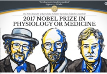 Screenshot of Nobel Prize announcement with illustration of three winners (Nobelprize.org)