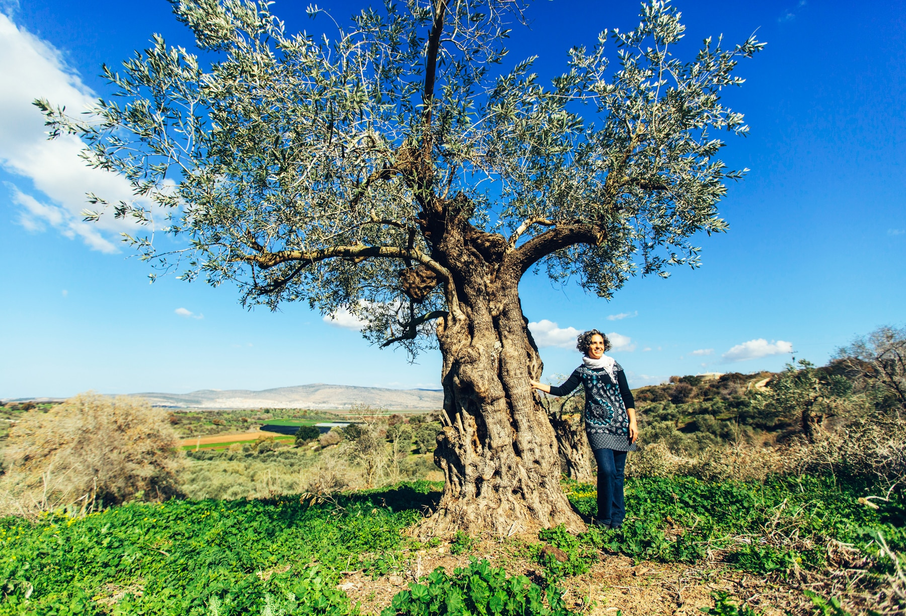 Woman standing by olive tree (USAID/Bobby Neptune)