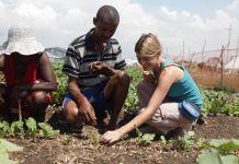 Três pessoas plantando em uma horta (Usaid)