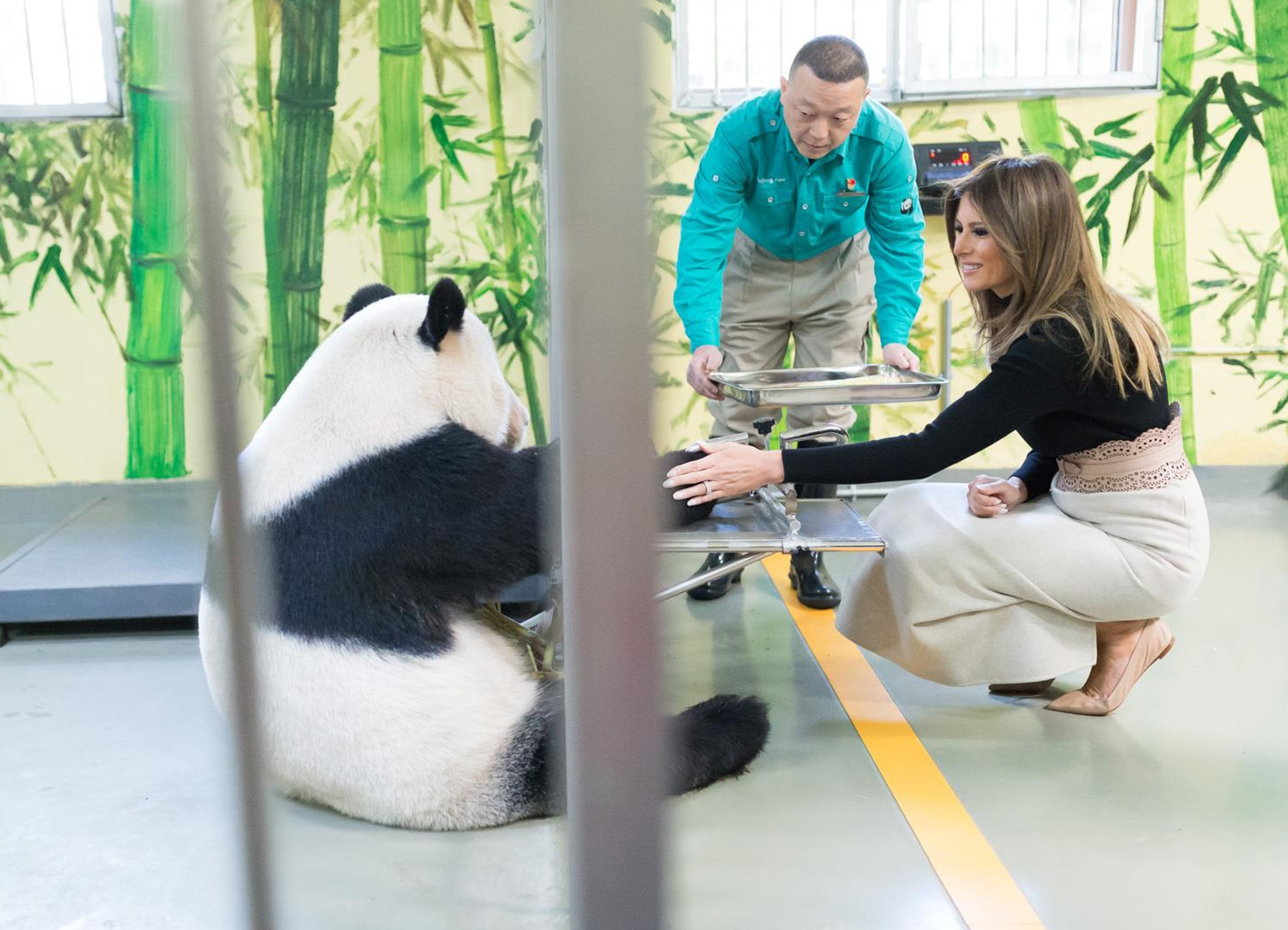 Melania Trump petting a panda through a cage (The White House)