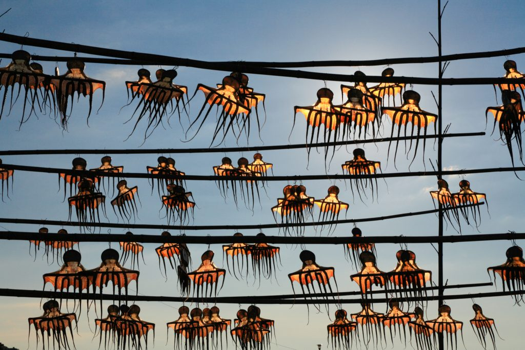 Octopus hanging on lines drying (© SOURCENEXT/Alamy)