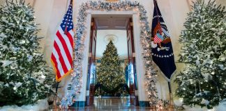Doorway with trees and flags leading to a Christmas tree ((© Saul Loeb/AFP/Getty Images)