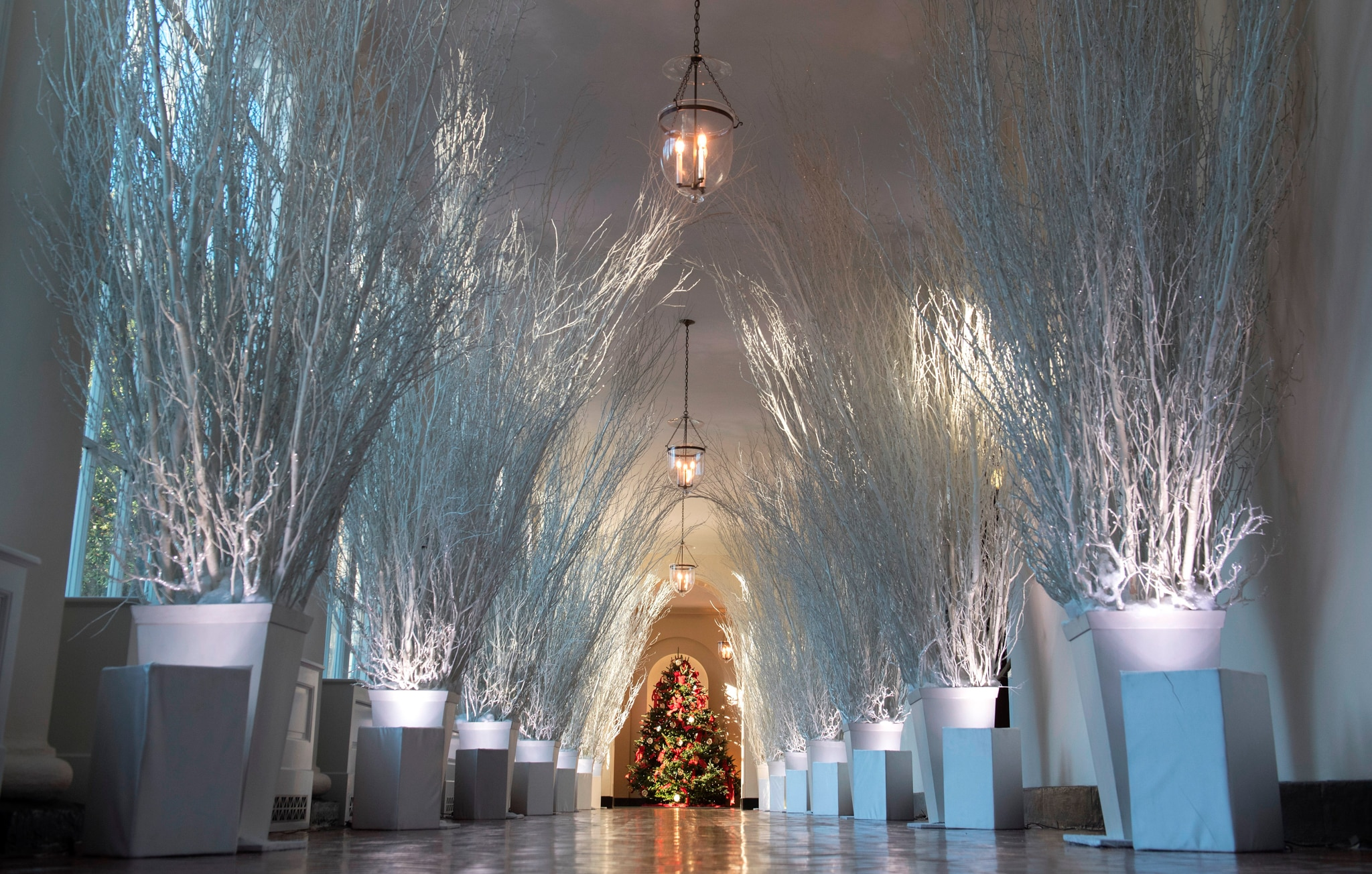 Grand hall lined with silver trees, with Christmas tree at end (© Saul Loeb/AFP/Getty Images)