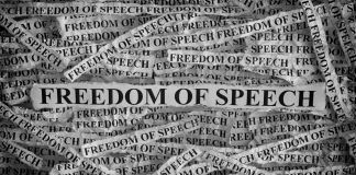 Strips of newspaper with 'freedom of speech' typed on them (© Stepan Popov/Alamy Stock Photo)