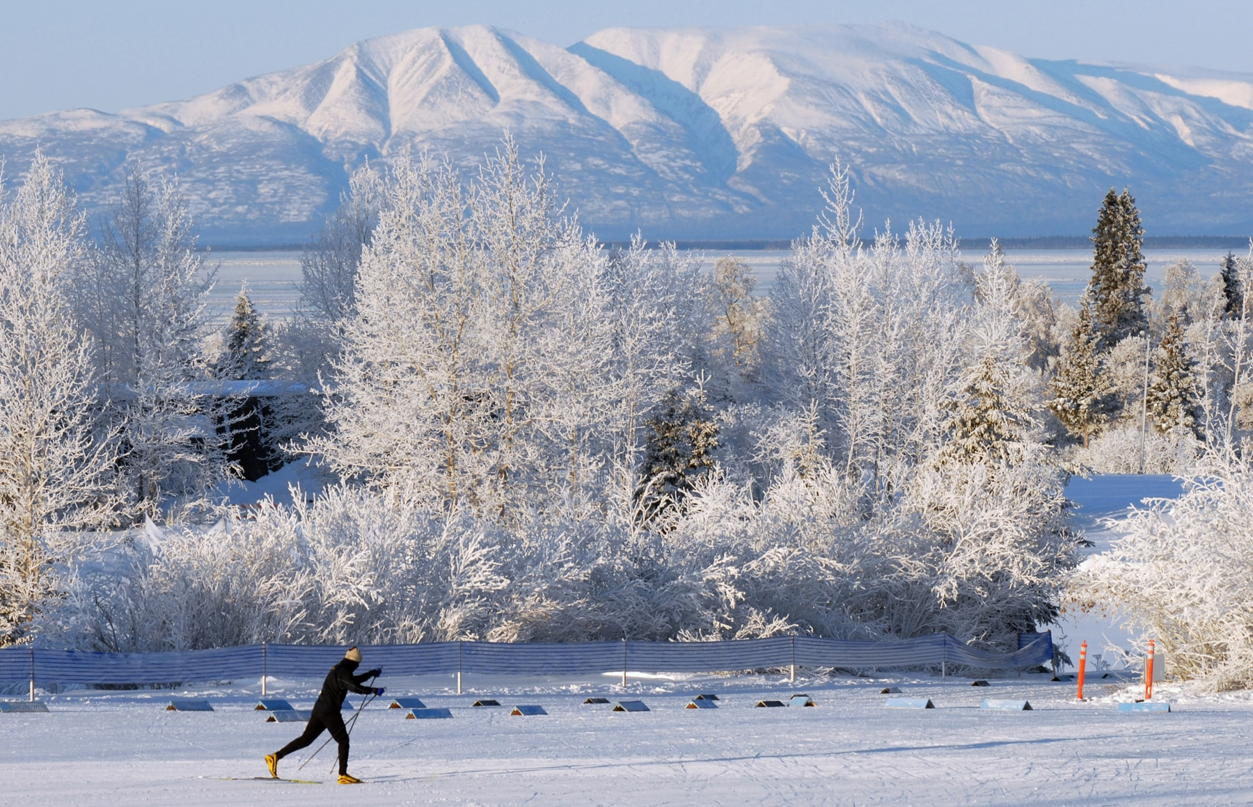 Person cross-country skiing near snow-covered trees, with snowy mountains in the background (© Bill Roth/Anchorage Daily News/MCT/Getty Images)
