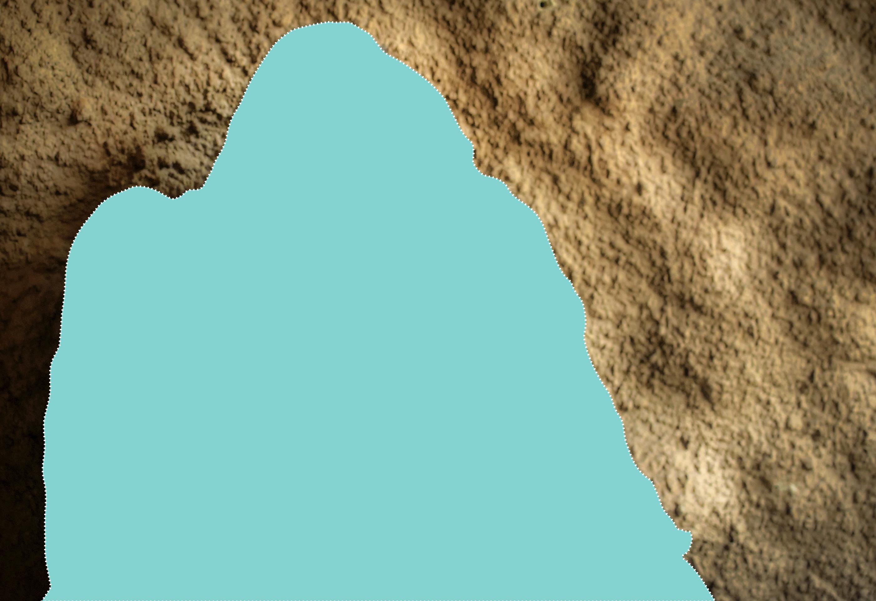 چٹان کے پس منظر میں ایک جانور کا خاکہ۔ (Shutterstock | ShareAmerica)