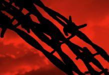 Коллаж: колючая проволока на фоне красного неба (Shutterstock)