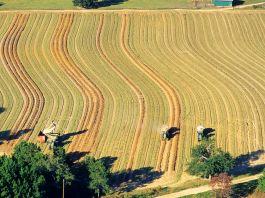 Vue aérienne de machines à récolter dans un champ d'arachides en Géorgie (© David R. Frazier Photolibrary, Inc./Alamy)