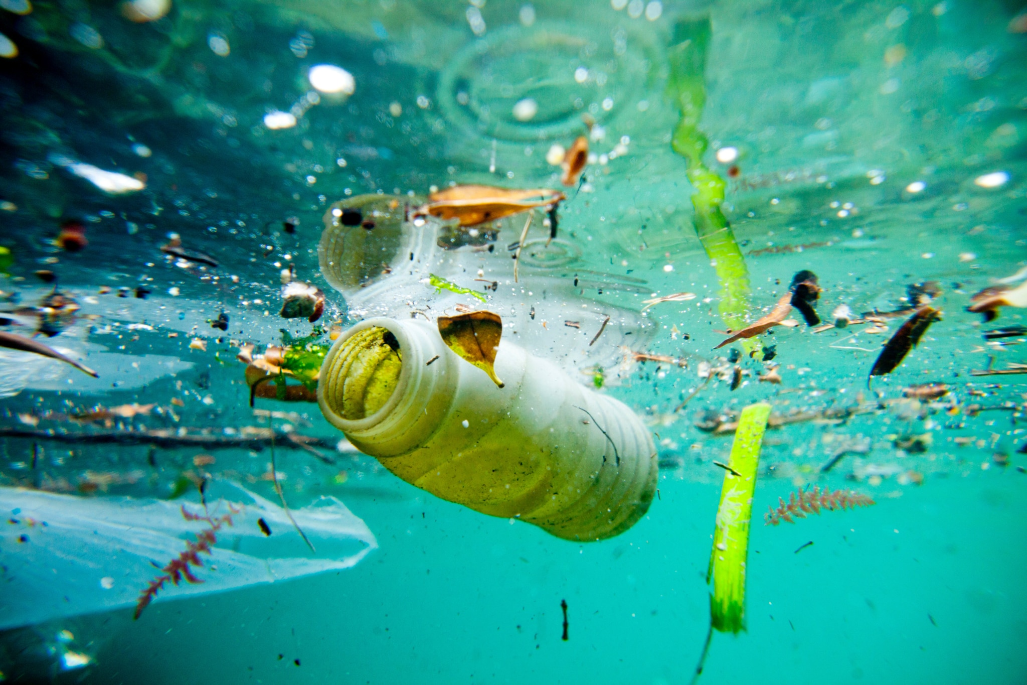 Basura plástica flotando en el agua (© Aurora Photos/Alamy Stock Photo)