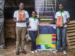 A woman and two men standing near a poster for charcoal and holding bags of charcoal (BrightGreen Renewable Energy)