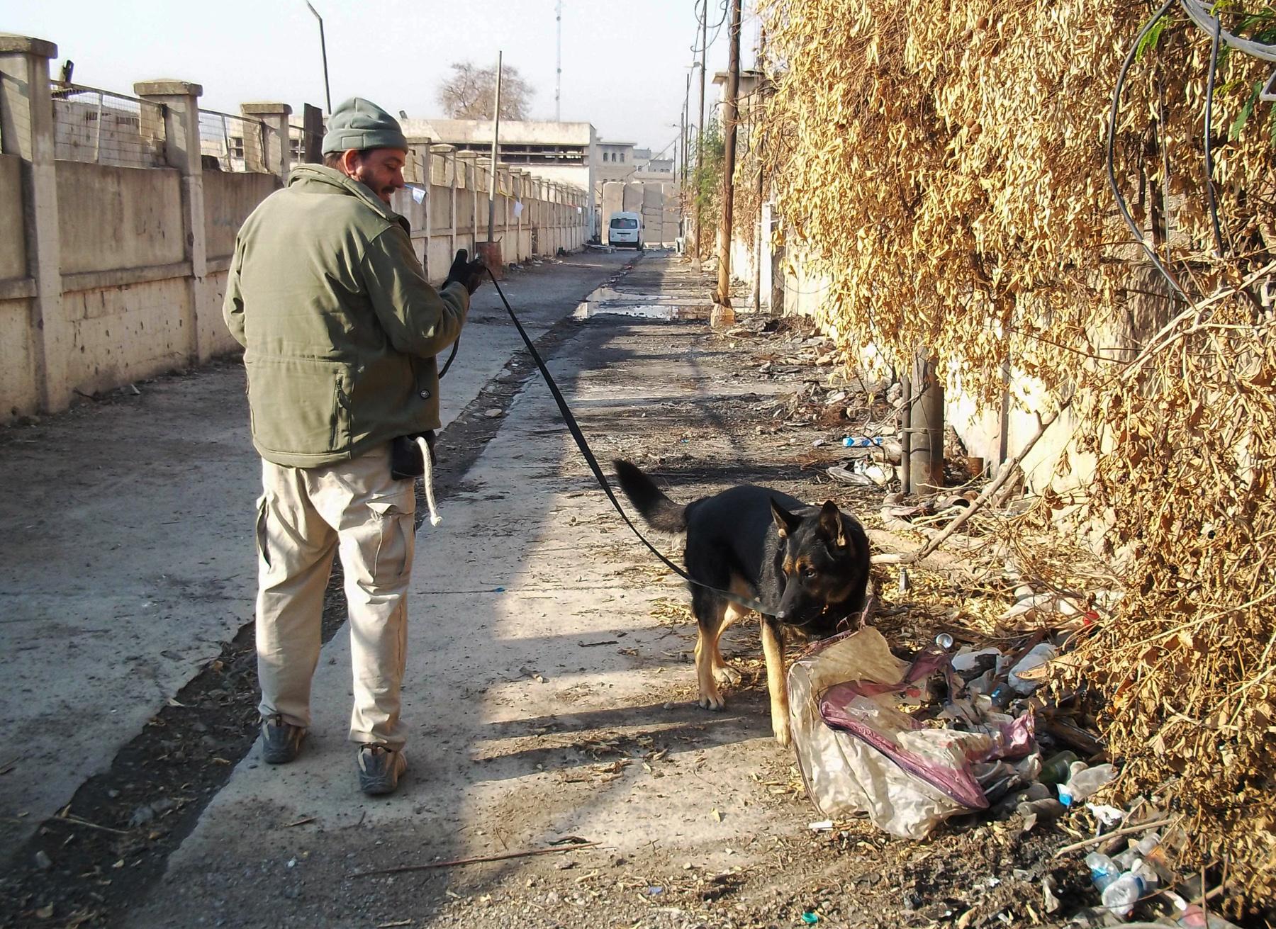 Hombre caminando con un perro con correa que investiga desechos a lo largo de un camino (Foto cedida)