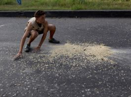 Boy picking up grains of corn from the street (© Fernando Llano/AP Images)