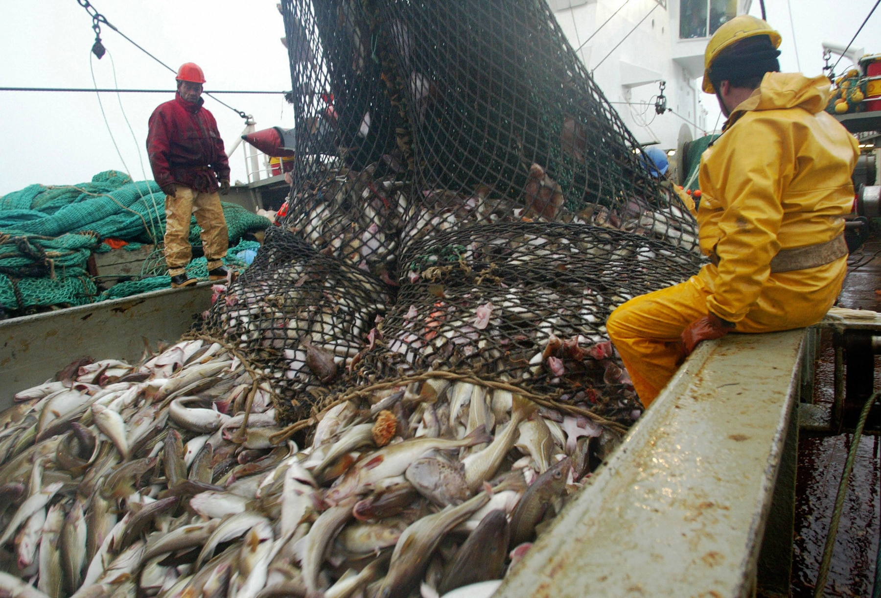 Two people on deck of boat filled with fish (© Marcel Mochet/AFP/Getty Images)
