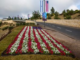 Flowers in the shape of the U.S. flag beside a road (© Ariel Schalit/AP Images)