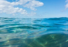 Ripples on the surface of body of water (© Bill Brooks/Alamy)