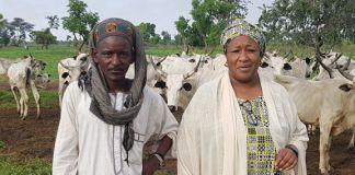 Man and woman standing near cattle (Courtesy of Zainab Mustapha Jaji)