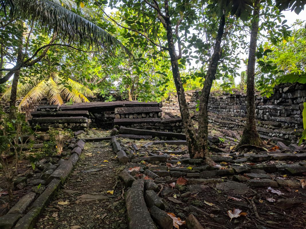 Ancient ruins in jungle (© Nicole Evatt/AP Images)