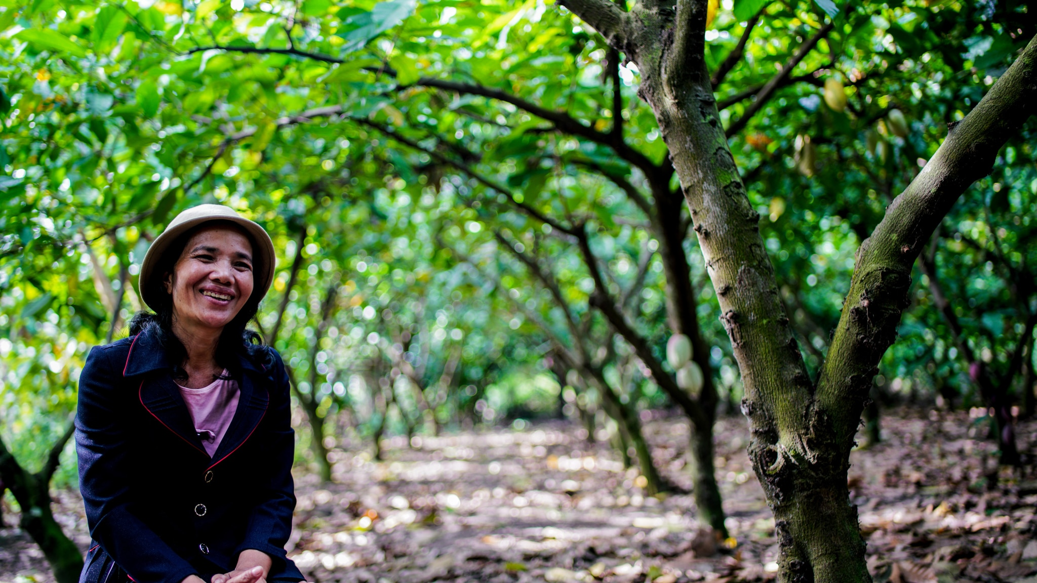Woman sitting amid cacao trees (Sarosh Hussain/USAID)