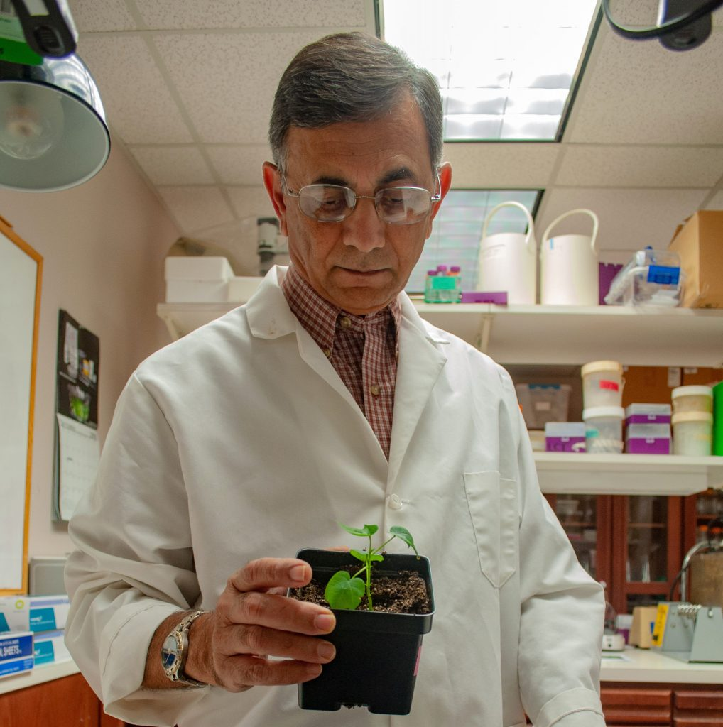 Man holding potted plant (Lacey Roberts/Texas A&M)