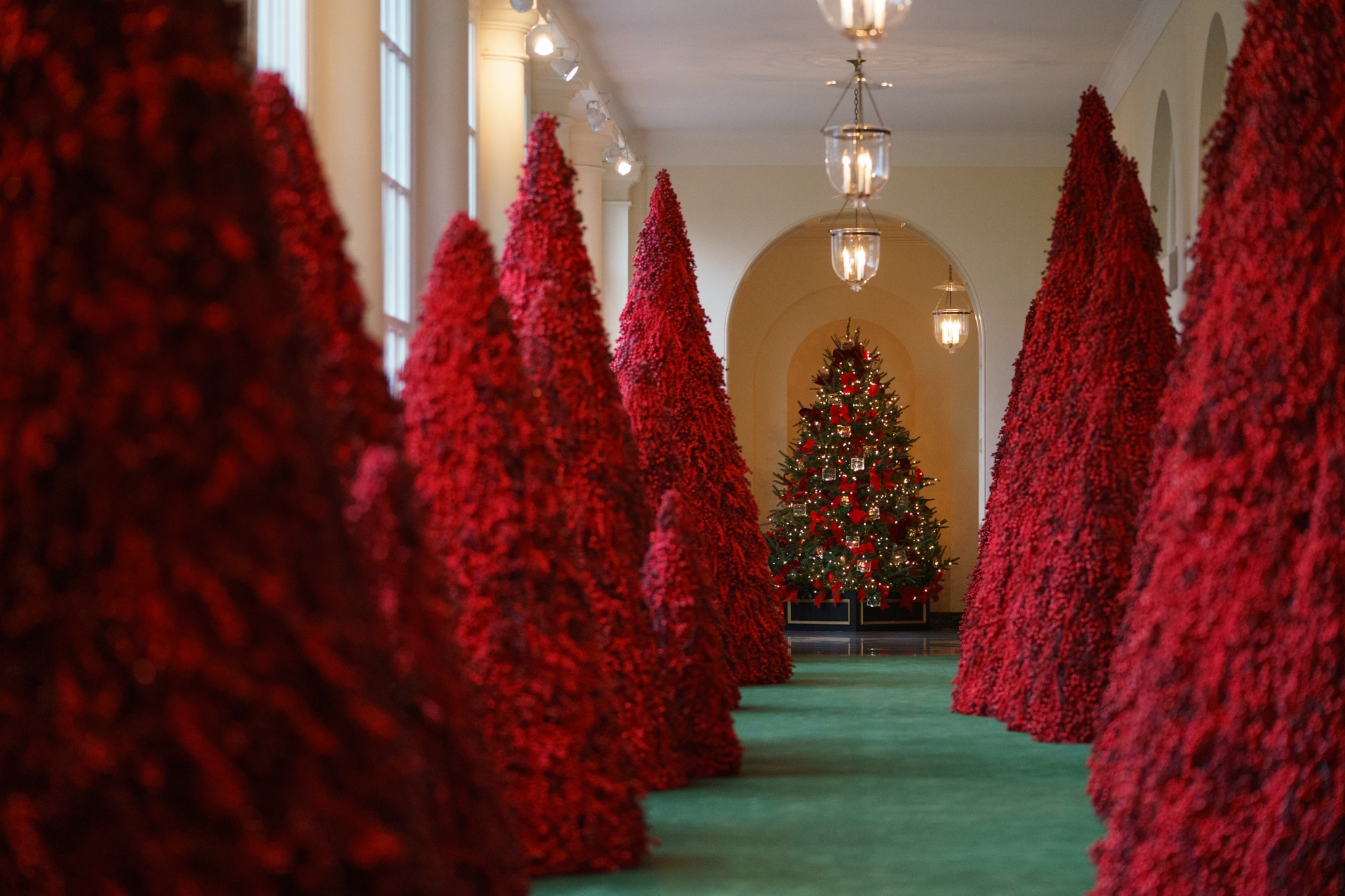 Red Christmas trees lining colonnade in the White House (© Carolyn Kaster/AP Images)