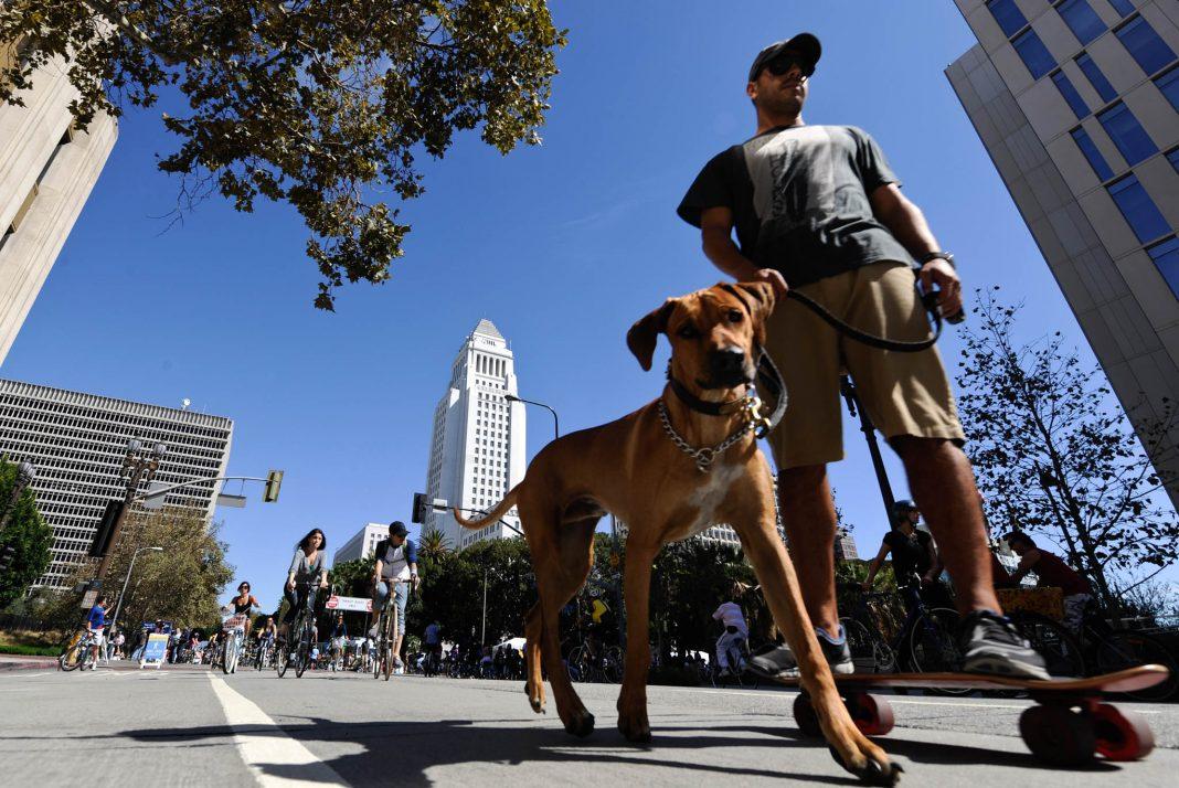 Homem anda de skate na rua com seu cachorro ao lado (© Chris Carlson/AP Images)