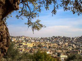 Vista aérea de cidade do Oriente Médio (@ Shutterstock)