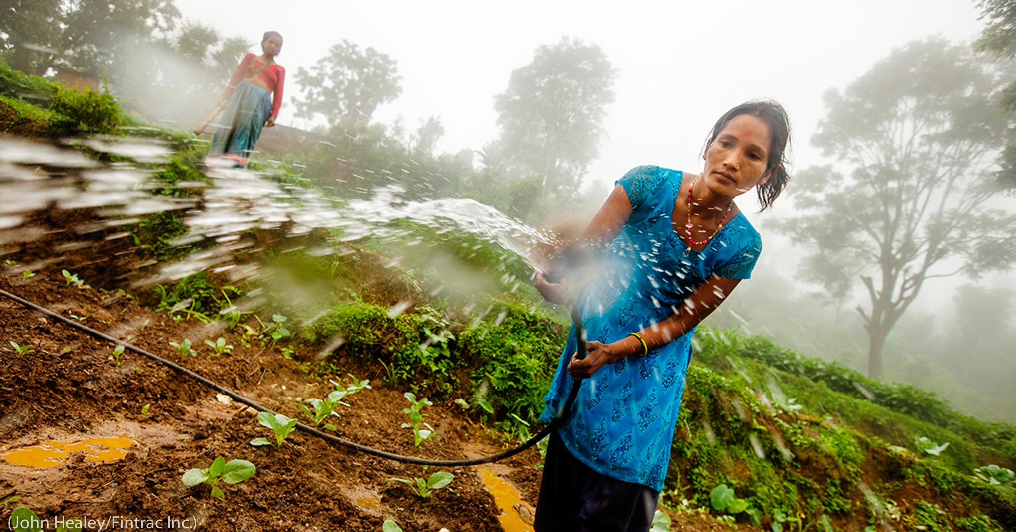Une femme arrosant des cultures avec un tuyau (John Healey/Fintrac Inc.)