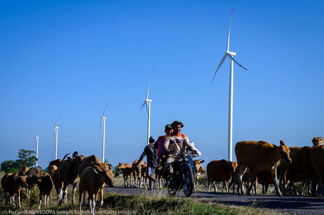 People on motorbikes riding past wind turbines and cattle (©