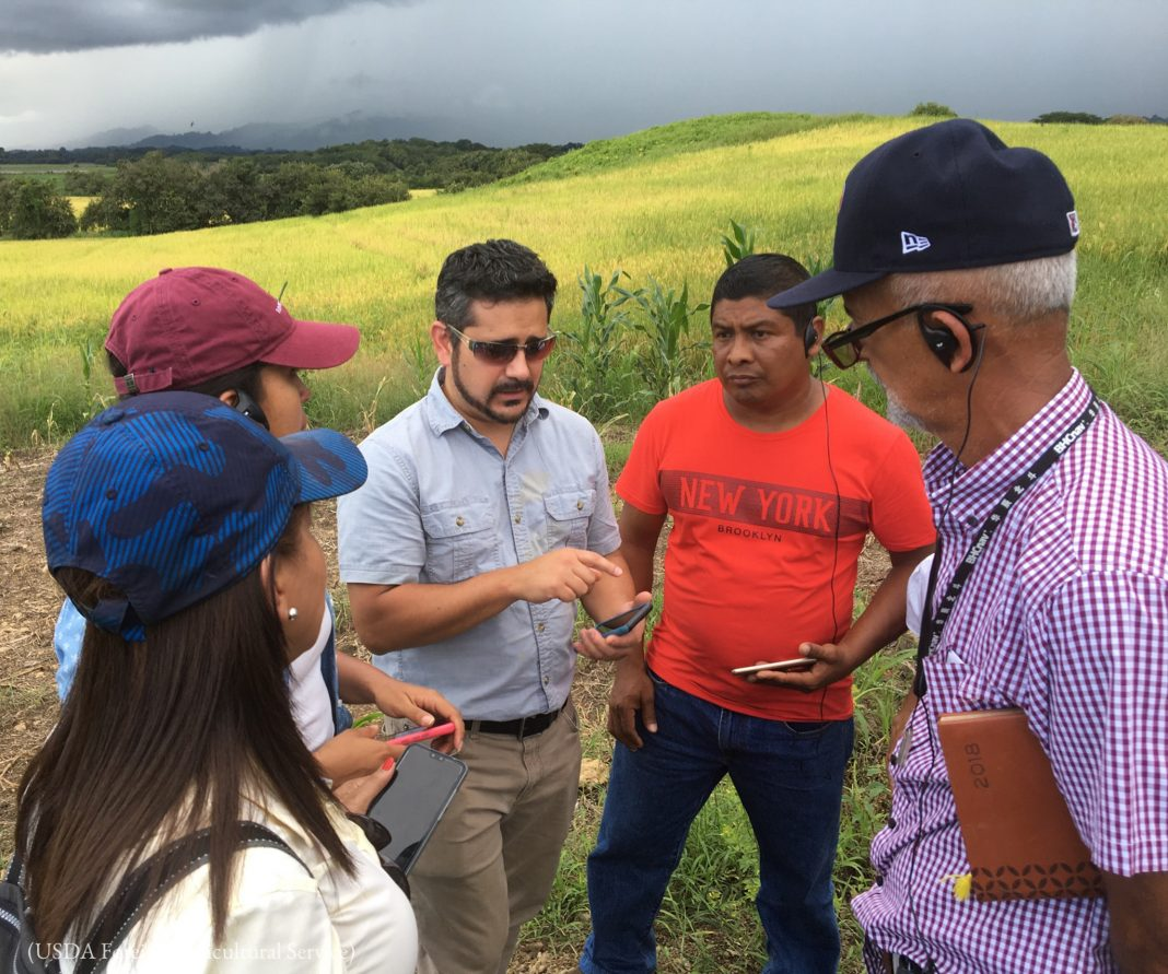 Man explaining how to collect field data to group (USDA Foreign Agricultural Service)