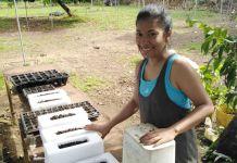 Женщина готовит рассадник