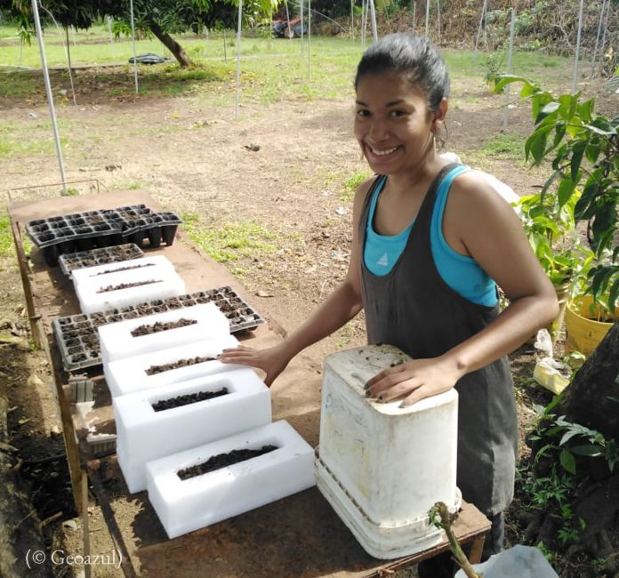 Yarelys Gomez preparing the seedbed for farming and greenhouse using the compost recycled organic waste