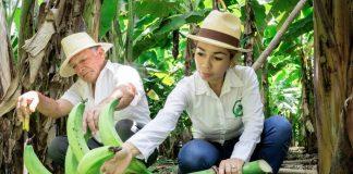 Homem e mulher com bananas-da-terra (© Margarita Bajaña/Revista Zonalibre)