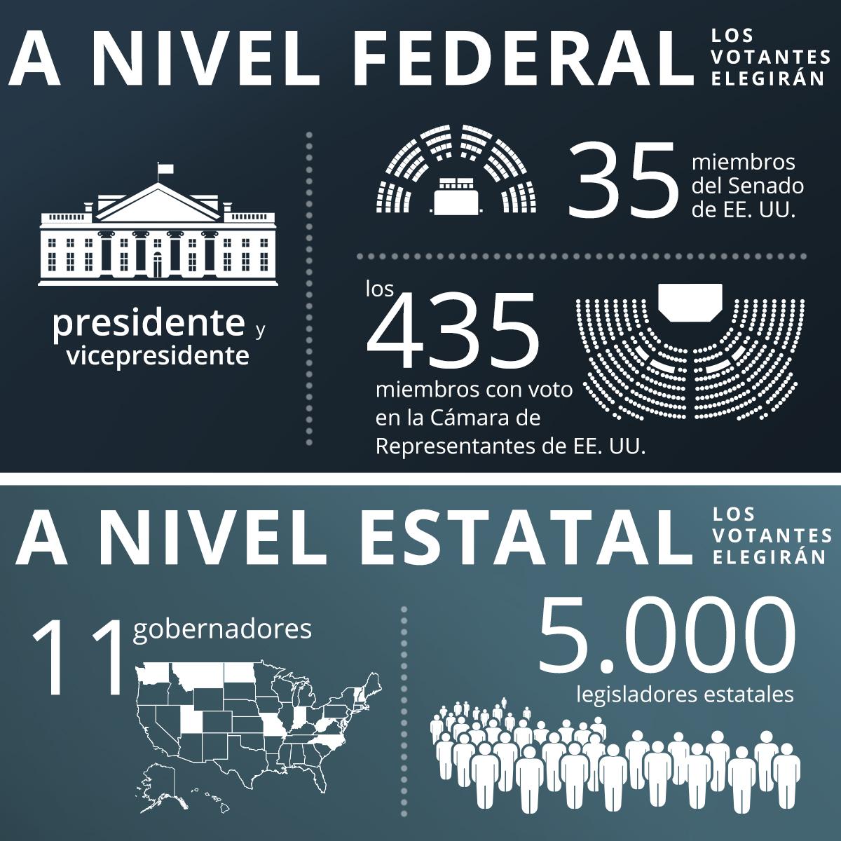 Gráfico que muestra los cargos a elegir en Estados Unidos a nivel federal y estatal en 2020 (Depto. de Estado/B. Insley)