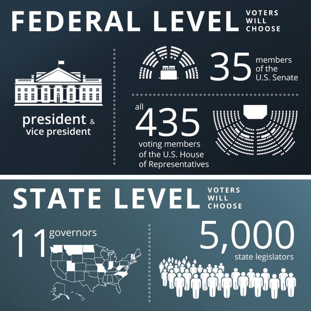 Graphic showing offices up for election in the U.S. at federal and state levels in 2020 (State Dept./B. Insley)