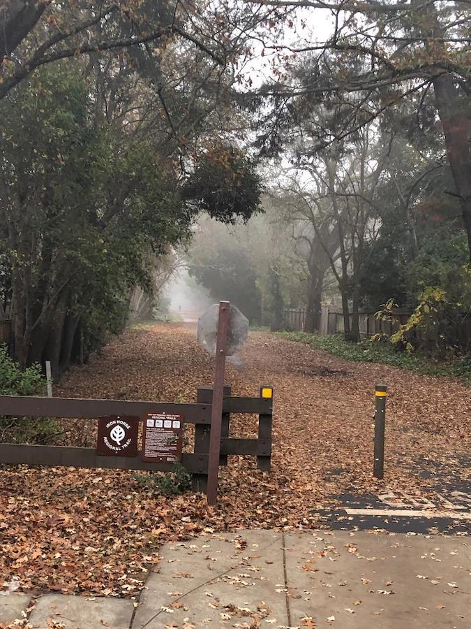 铁马步道与街道交叉的一处路口,一位骑车人在晨雾中远去。(Jianan)
