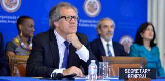 Luis Almagro sentado a una mesa (OEA/Juan Manuel Herrera)