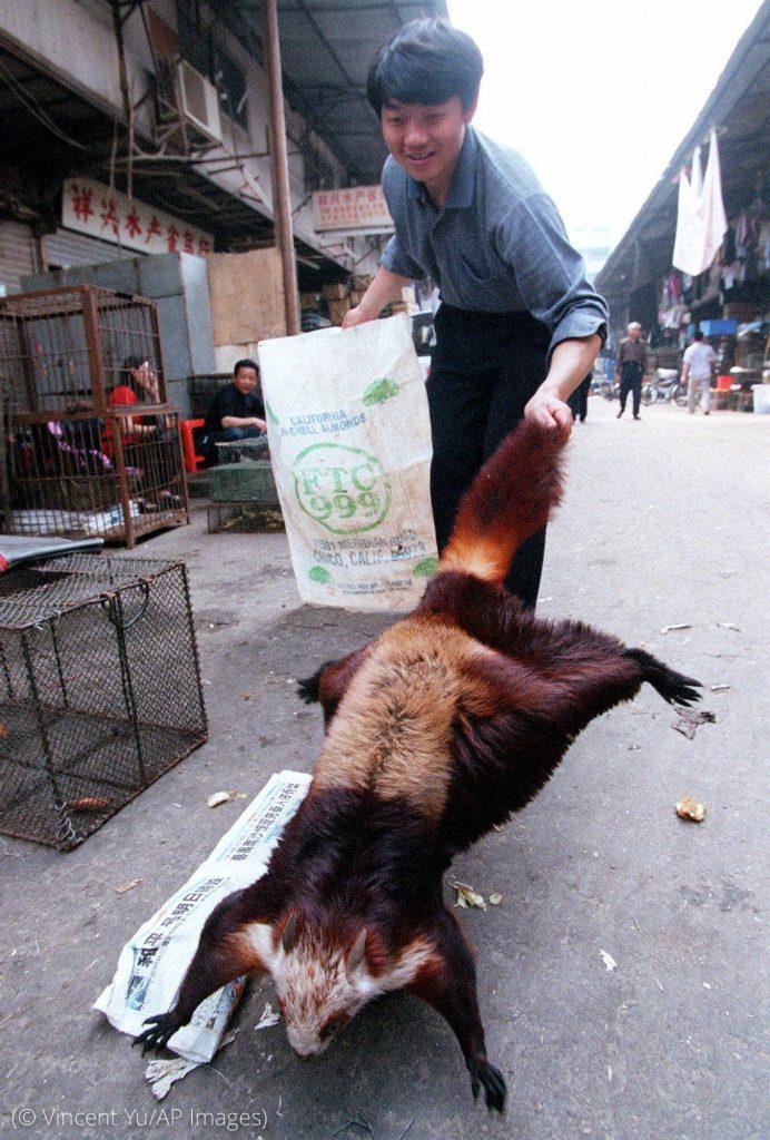 一名男子站在街上抓着一只动物的尾巴 (© Vincent Yu/AP Images)