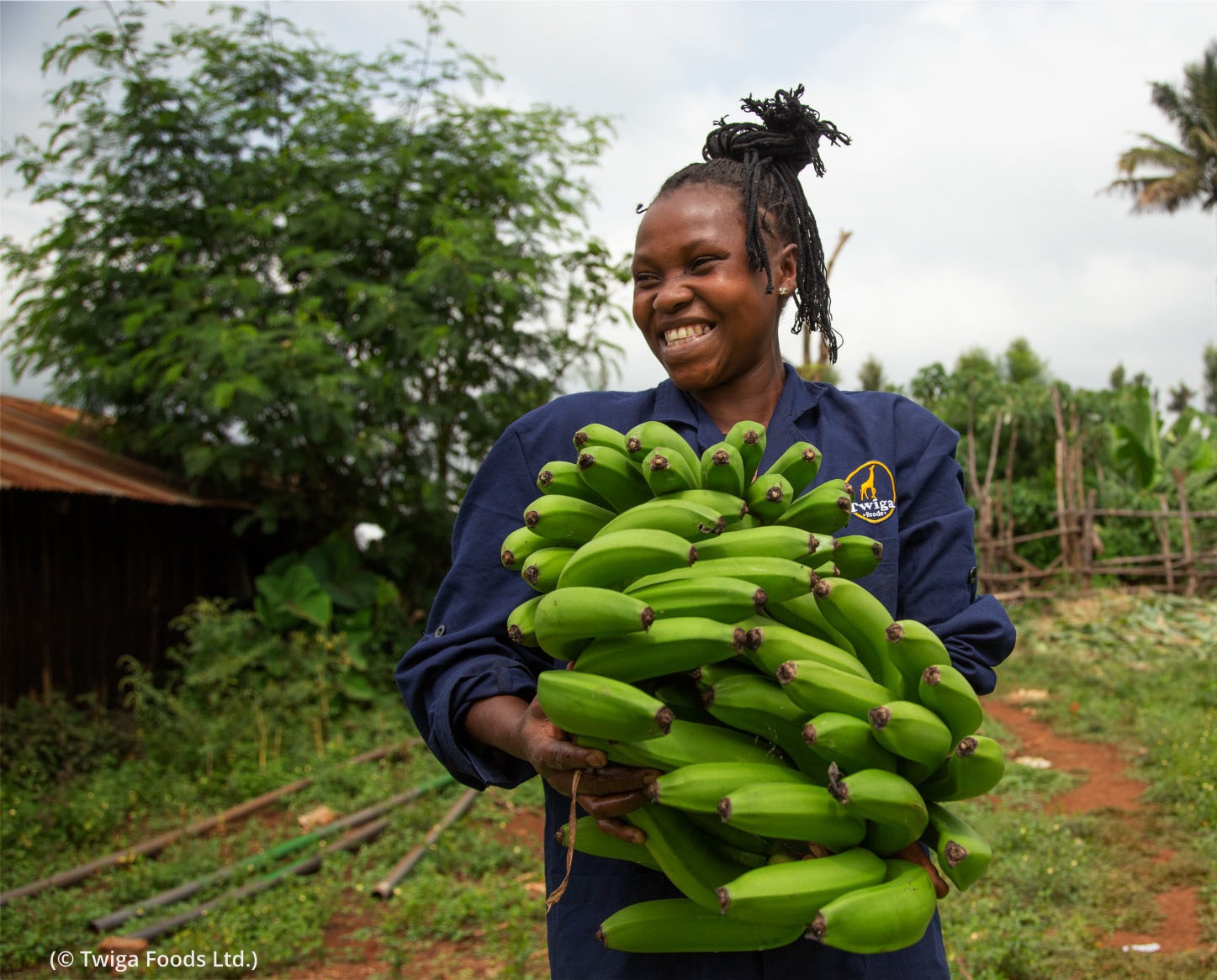 Smiling woman holding bunch of green bananas (© Twiga Foods Ltd.)