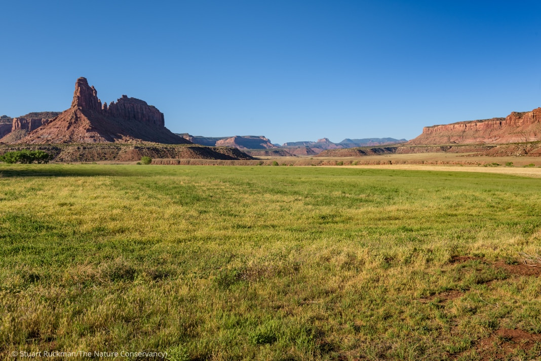 Grassland with rock formation in background (© Stuart Ruckman/The Nature Conservancy)